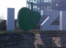 I love Zielona